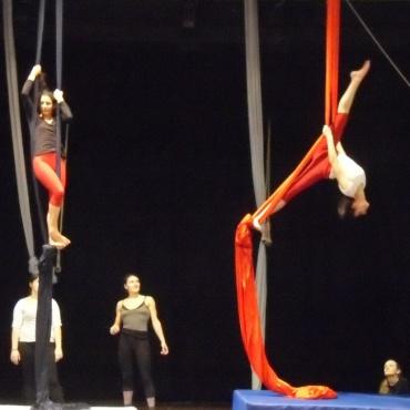 <p>Promozione e comunicazione stage di danza aerea&nbsp;e acrobalance per adulti</p>
